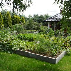 Warzywniki - Betonowe Rabaty Warzywne Garden Fire pits & barbecues