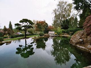 Schwimmteich in Bad Soden Kirchner Garten & Teich GmbH Moderner Garten