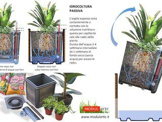 Modularte Srl Interior landscaping
