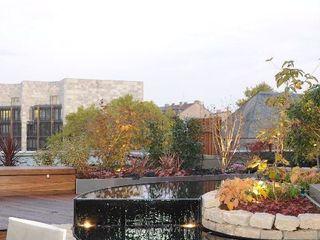 Moderner Dachgarten dirlenbach - garten mit stil GartenSchwimmbecken und Teiche
