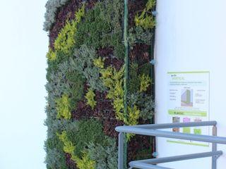 VIVSA. VIVIENDA SANA Interior landscaping