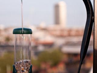 Victoria 2, London Urban Roof Gardens Balcone, Veranda & Terrazza in stile moderno