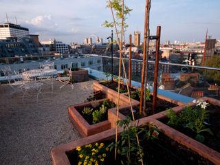 Victoria 2, London Urban Roof Gardens Modern terrace