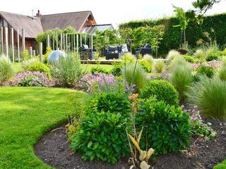 Traditional Garden Unique Landscapes 庭院