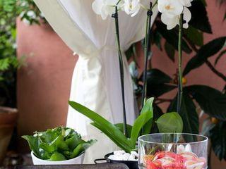 EK GARDEN Esra Kazmirci Mimarlik Garden Accessories & decoration