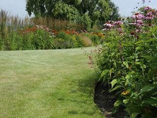 Surrey contemporary country garden Arthur Road Landscapes Modern Garden