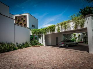 Urban Landscape Modern Garden