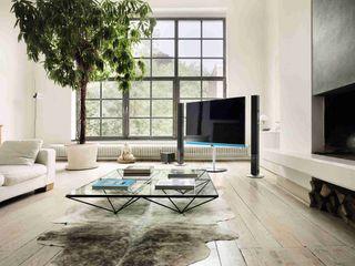 Loewe Technologies GmbH Multimedia roomElectronics