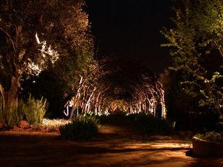 Private Villa in French Riviera Cannata&Partners Lighting Design Klasyczny ogród