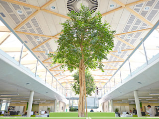 WWF building for Hopkins Architects Janie Airey Photographer Edificios de oficinas de estilo moderno