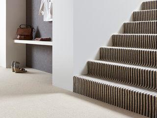 Lauderdale Crown Floors Ściany i podłogiWykładziny ścienne i podłogowe