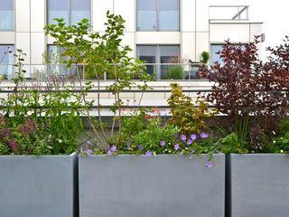 Dachterrasse und Dachgarten in Berlin Nelka Balkon, Veranda & Terrasse