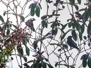 Folia Birds Wallpaper Witch and Watchman Walls & flooringWallpaper