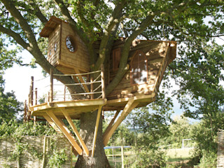Imaginative Tree House Charm Squirrel Design Tree Houses Limited Rustic style garden
