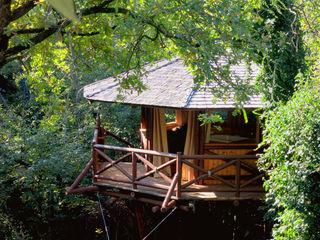 Tree Top Builder Tropische Häuser