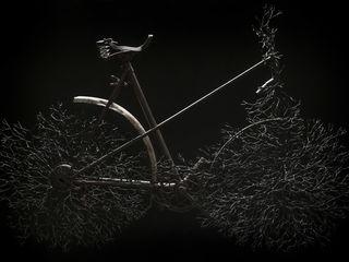 YZO ArtworkSculptures