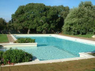 Per il primo articolo acquaform GiardinoAccessori & Decorazioni