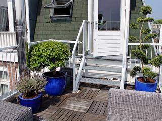 Housen and Terraces in Amsterdam Boom in Huis / Baum im Haus / Trees in the Home Balkon, veranda & terrasPlanten & bloemen