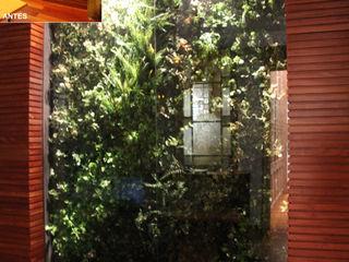 Jardin Vertical para Oficina de la Unió de Federacions Esportives de Catalunya Paisajismo Digital