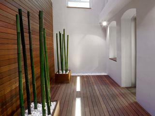 Proyecto Patio de Luces - Oficinas Unicaja Barcelona Paisajismo Digital Oficinas y tiendas de estilo minimalista