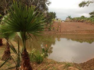 Jardin en Finca Mexicana, Veracruz Paisajismo Digital Jardines de estilo rural