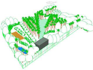 Jardin en Finca Mexicana, Veracruz Paisajismo Digital