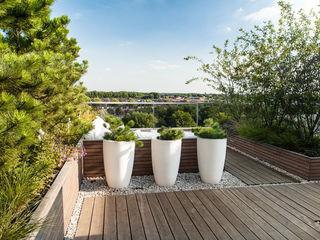 Studio REDD exclusieve tuinen Modern Balkon, Veranda & Teras