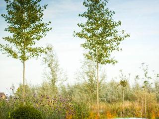 Stam Hoveniers Garden Furniture