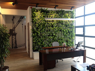 Stam Hoveniers Office spaces & stores