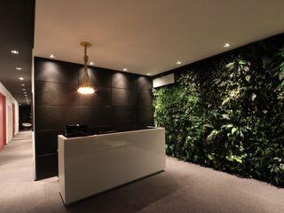 ZAAV Arquitetura Bureau minimaliste
