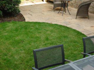 Long suburban Garden Fenton Roberts Garden Design Jardins modernos
