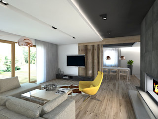 BAGUA Pracownia Architektury Wnętrz Вітальня