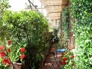 HBstudio Balconies, verandas & terraces Plants & flowers