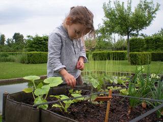 BACSAC® Garden Plant pots & vases