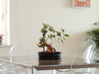 Francesca Bonorandi Modern dining room