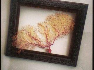 Decorar con Naturaleza Cn Interiorismo ArteCuadros e ilustraciones