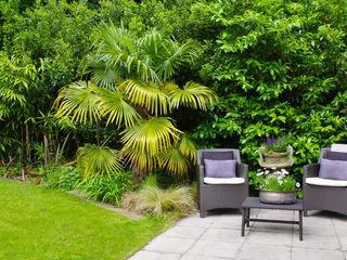 Modern Family Home, Highgate, London LLI Design Modern Garden