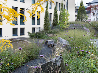 Ästhetische Natürlichkeit GartenLandschaft Berg & Co. GmbH Moderne Bürogebäude