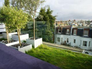 Fulham Roof Terrace Organic Roofs Balcones y terrazas de estilo minimalista