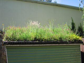 Small Green Roofs Organic Roofs Garajes y galpones de estilo rústico