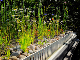 Commercial and public green roofs Organic Roofs Casas modernas
