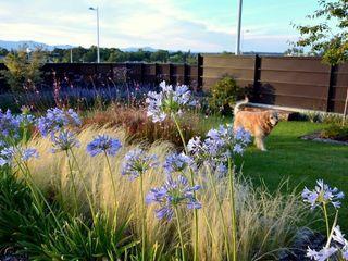 Jardín Contemporaneo La Paisajista - Jardines con Alma Jardines de estilo moderno