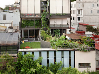 EDIFICIO TEOTIHUACAN Cm2 Management Jardines minimalistas