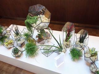 Terrarium Installations The Urban Botanist Living roomAccessories & decoration