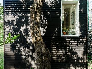 Grupa Bio3 Jardines de estilo escandinavo