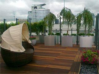 Sungarden - Projektowanie i urządzanie ogrodów
