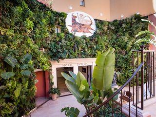 JUNGLE ART Hotéis tropicais