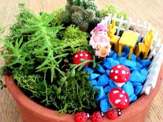 Bahçehane 家居用品植物與配件