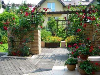 Bioarchitektura - Ogrody, Krajobraz, Zieleń we wnętrzach Eclectic style garden