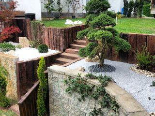 abelia peyzaj Moderne tuinen